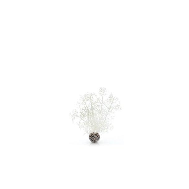 Sea Fan Hvid. Small