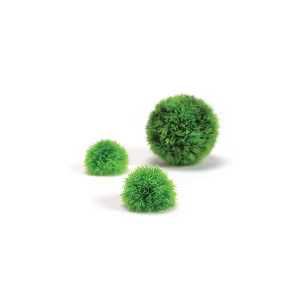 Mosbolde Grøn. 3 stk.