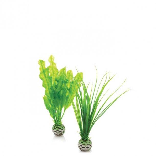 Easy plastikplante grøn small. 2 stk pak