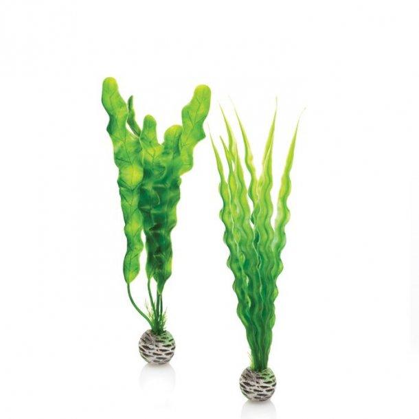 Easy plastikplante.Grøn 2 stk. Medium.