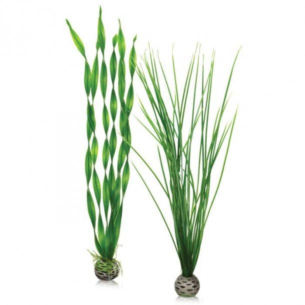 Easy plastikplante. Grøn 2 stk. Large